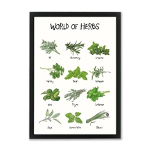 Mouse and Pen - World of herbs